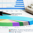 Stock market graphs. — Stock Photo