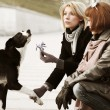 Women and a dog — Stock Photo