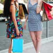 图库照片: Two young women with shopping bags