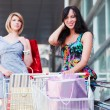 Young women with shopping cart — Stock Photo #33971989