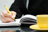 Business-Frau in Notizbuch schreiben — Stockfoto