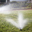 Stock Photo: Automatic watering