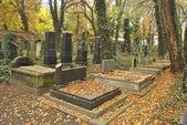 Старый не посещал кладбище — Стоковое фото