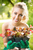 Beautiful woman planting flowers — Stok fotoğraf