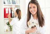 At the veterinary — Stock Photo