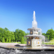 "Fountain"" Roman"" in Pertergof, Saint-Petersburg, Russia — Stock Photo #12031657"