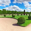 Upper Park in Pertergof, Saint-Petersburg city ,  Russia — Foto de Stock