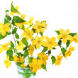 Bouquet Marsh Marigold Yellow wildflowers in vase . — Stock Photo