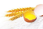 Spikelets of wheat with egg on flour spillage.Isolated. — Stock Photo