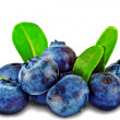 Heap  fresh blueberrys  isolated on white background — Stock Photo