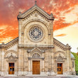 Church Eglise Notre Dame Des  Champs. Paris. France. — Stock Photo
