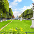 Luxembourg Garden(Jardin du Luxembourg)  in Paris, France — Stock Photo