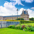 Park des Tuileries and Louvre Museum.Paris, France — Stock Photo #34402101
