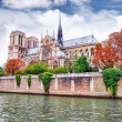 Notre Dame de Paris Cathedral.Paris. France. — Stock fotografie