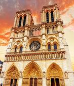 Notre Dame de Paris Cathedral, garden with flowers.Paris. France — Stock Photo