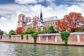 Notre Dame de Paris Cathedral.Paris. France. — Stock Photo