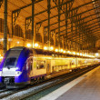 Modern Fast Passenger Train at the station. — Stock Photo #36059769