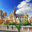 Notre Dame de Paris Cathedral.Paris. France. — Stock Photo