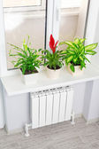 Heating white radiator  with flower and window. — Foto Stock