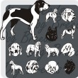 Dog Breeds - vector set — Imagen vectorial