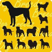 Silhouettes of Dogs - vector set. — Stock Vector