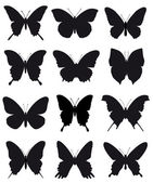 Beautiful silhouettes of butterflies for ornament and design on white background — Stock Vector