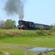 Rural landscape with steam train — Stock Photo #1888880