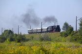 Retro parní vlak — Stock fotografie