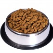 Dog food — Stock Photo