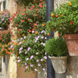 Typical Mediterranean Village with Flower Pots in Facades in Val — Stock Photo