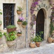 Typical Mediterranean Village with Flower Pots in Facades in Val — Stock Photo #29225771