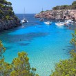 The Beautiful Beach of Cala Pi in Mallorca, Spain — Stock Photo