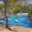 Beautiful Beach of CalPi in Mallorca, Spain — Stock Photo #29229045
