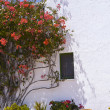 Typical House With Flower Pots in Mallorca, Spain — Stock fotografie