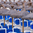 Sandy Beach With Straw Umbrellas and Sunbeds — Stock Photo