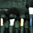 Professional make-up artist brush's — Stockfoto