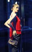現代の服の店の窓 — ストック写真