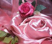Pink silk. — Stock Photo
