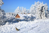 Country old house in snow — Stock Photo