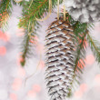 Christmas card with pines and spruce twig — Stock Photo