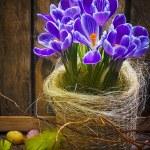 Art Easter Egg basket wooden card crocus spring flower feather — Stock Photo #21564925