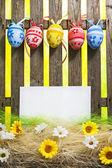 Art Easter Egg background fence card blank spring flower eggs — Φωτογραφία Αρχείου