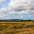 Train windmill wind turbines farm landscape field — Stock Photo