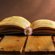 Stock Photo: Book daisy open old vintage wooden board flower grunge dirty vin
