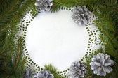 Pine christmas xmas spruce twig circle empty — Stock Photo