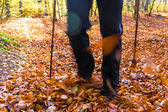 Nordic walking sport run walk motion blur outdoor person legs fo — Stock Photo