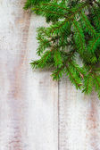 Christmas tree spruce green wooden — Stock Photo