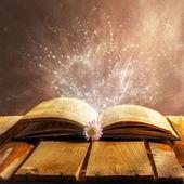 Open book magic — Stock Photo