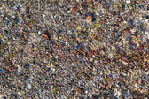 Background concrete wall colored stones — Стоковое фото