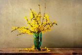 Still life bouquet forsythia — Stock Photo